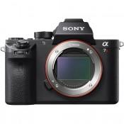 Mirrorless Digital Cameras